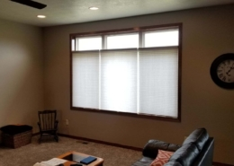 Energy Efficient Cellular Shades